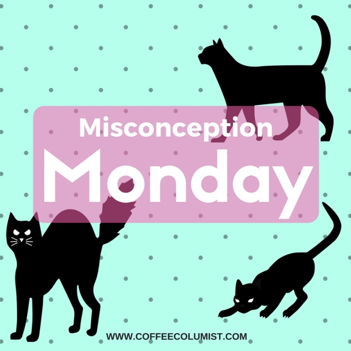 Misconception Monday: Black Cats