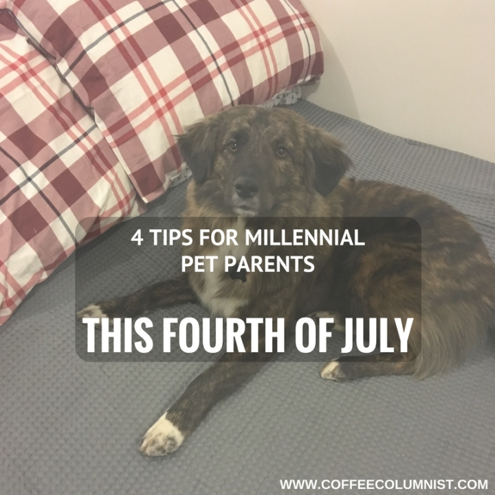 4 Tips for Millennial Pet Parents This Fourth of July